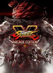 سی دی کی اورجینال Street Fighter V