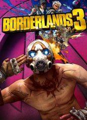 سی دی کی اورجینال  Borderlands 3