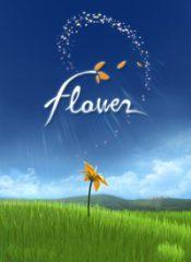 سی دی کی اورجینال  Flower