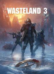 سی دی کی اورجینال Wasteland 3