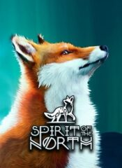 سی دی کی اورجینال Spirit Of The North