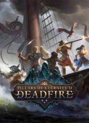 سی دی کی اورجینال Pillars of Eternity II: Deadfire